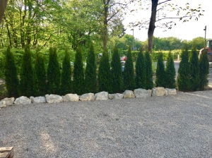 Es wird grün im Biergarten des Schwimmvereins Würzburg 05